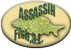 Logo Assassin Fish